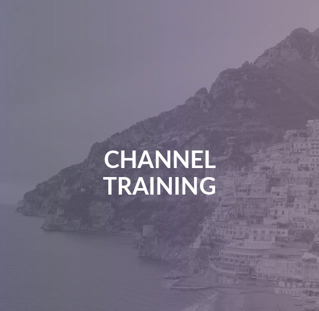 Distribution Channel Training Case Study